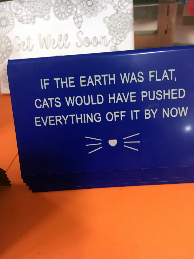 If the Earth was flat cats would have pushed everything off by now.