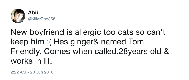 New boyfriend is allergic too cats so can't keep him :( Hes ginger& named Tom. Friendly. Comes when called.28years old & works in IT.