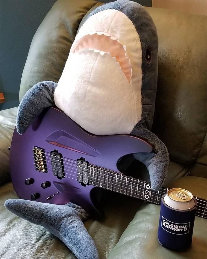 Shark playing a guitar.