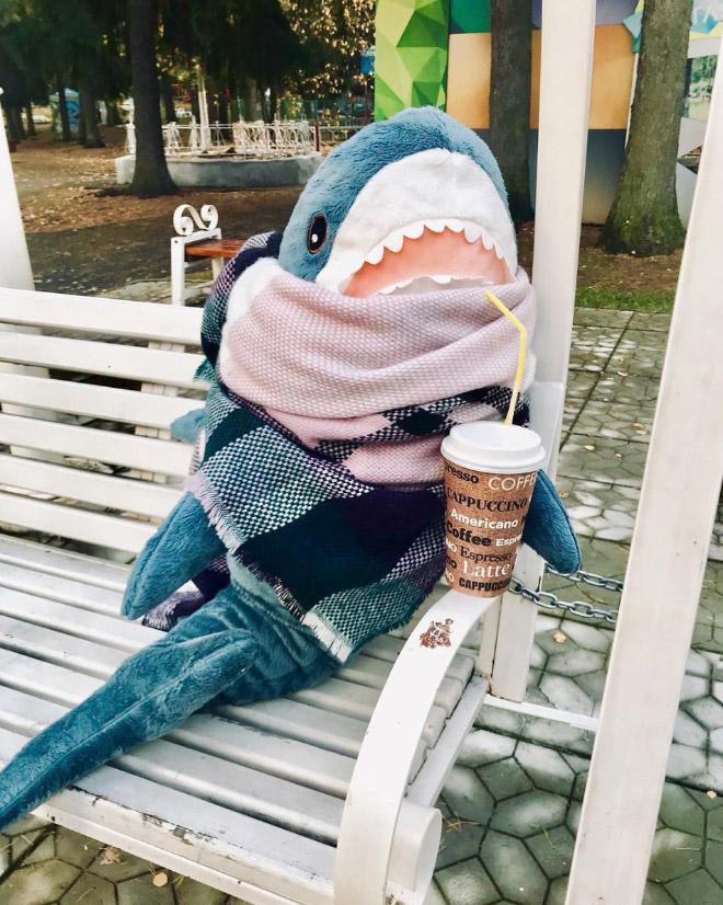 Shark enjoying some coffee.