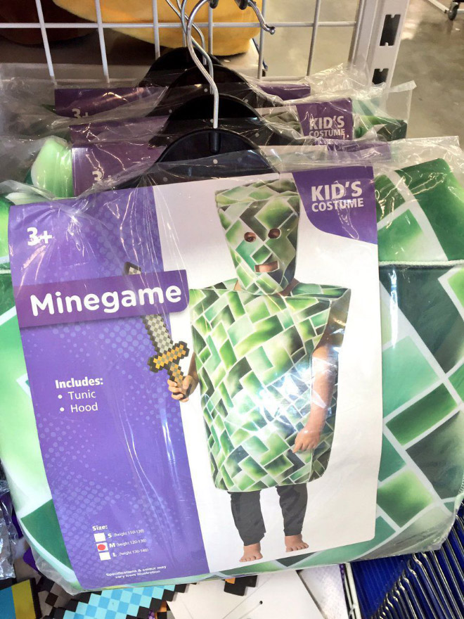 Minecraft costume.