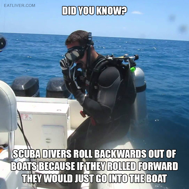 Scuba divers roll backwards out of boats because if they rolled forward they would just go into the boat.