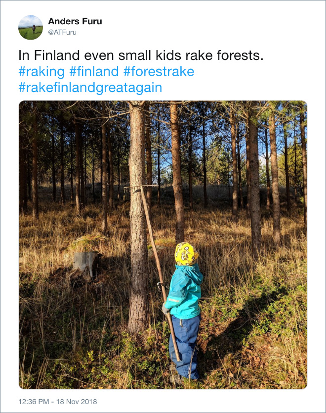 Even kids are raking forests in Finland.