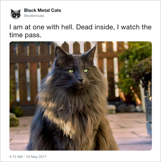 Black metal cat watches the time pass.