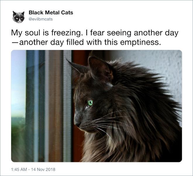 My soul is freezing...
