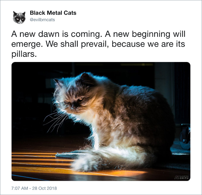 A new dawn is coming...