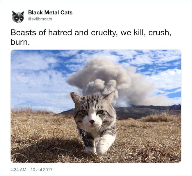 We kill, crush, burn.