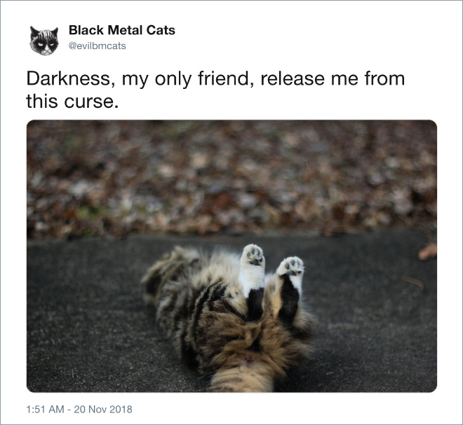 Release me from the curse!