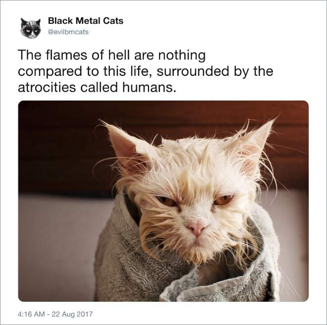 The flames of hell are nothing compared to this life, surrounded by the atrocities called humans.