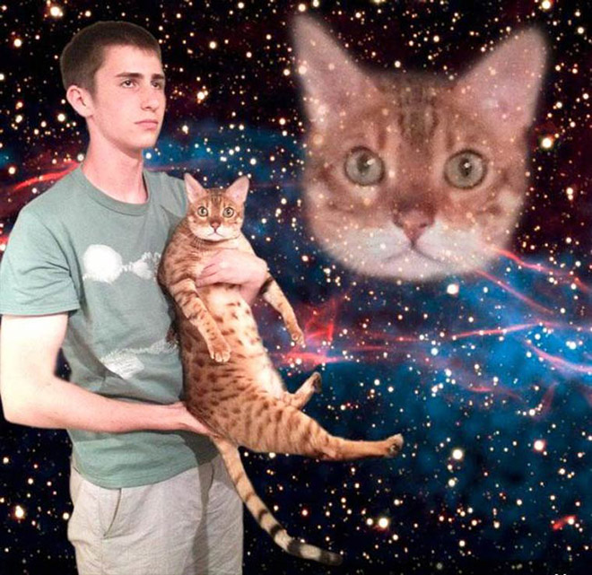 Futuristic glamour shot with a cat.