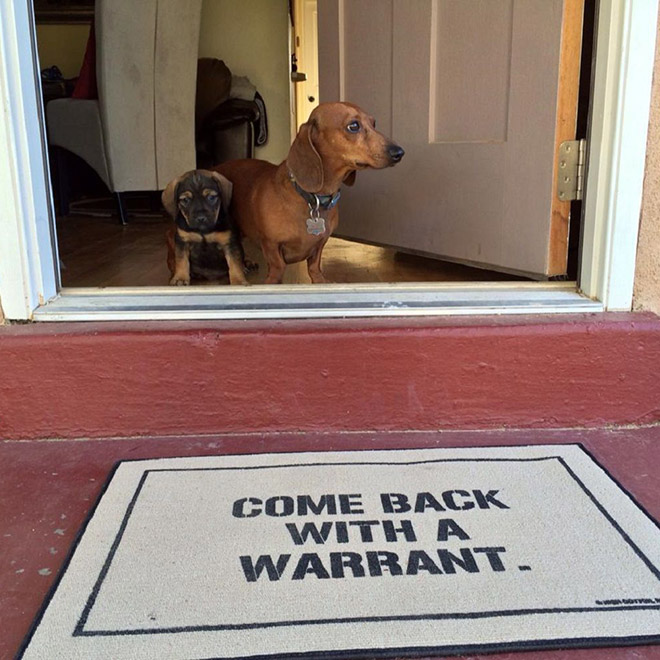 Come back with a warrant.