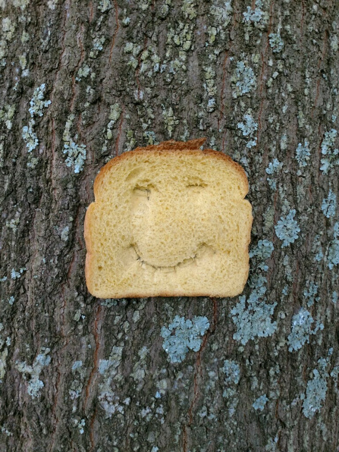 Smiling bread stapled to a tree.