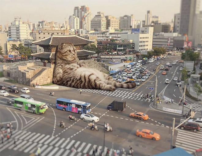 Sleepy giant cat in the city.