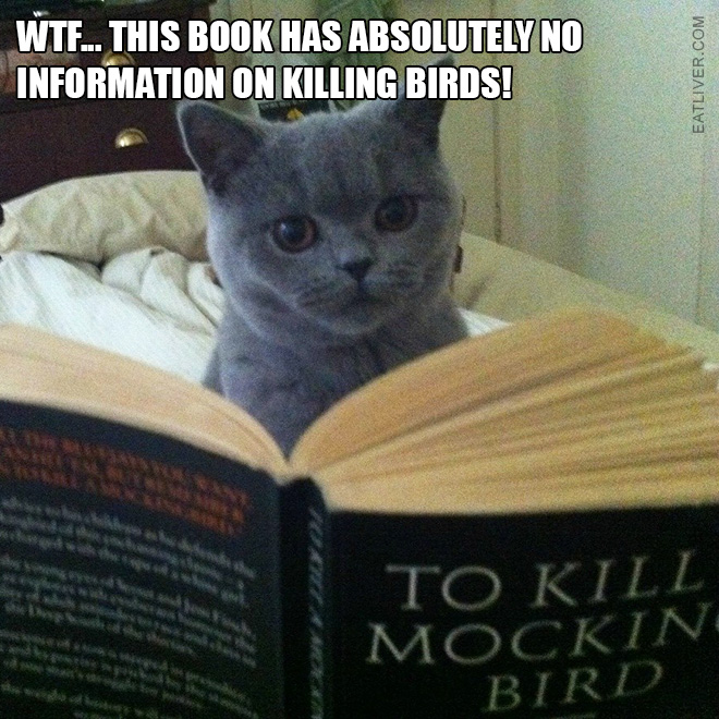 WTF... This book has absolutely no information on killing birds!
