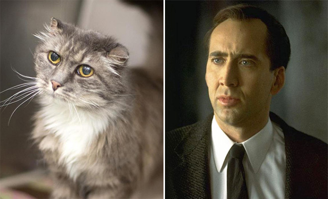 Nicolas Cage and his double.