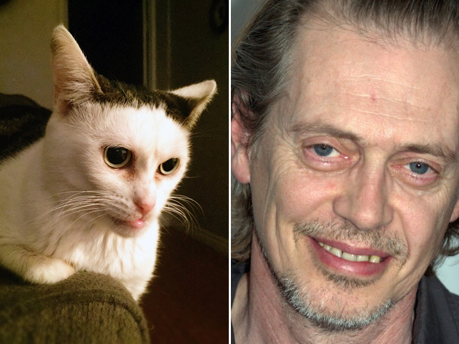 Steve Buscemi and his double.