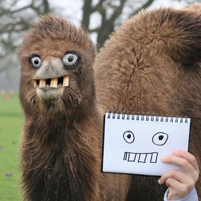Camel doodle recreated as a real living thing.