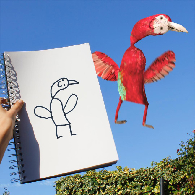 Bird doodle recreated as a real living thing.