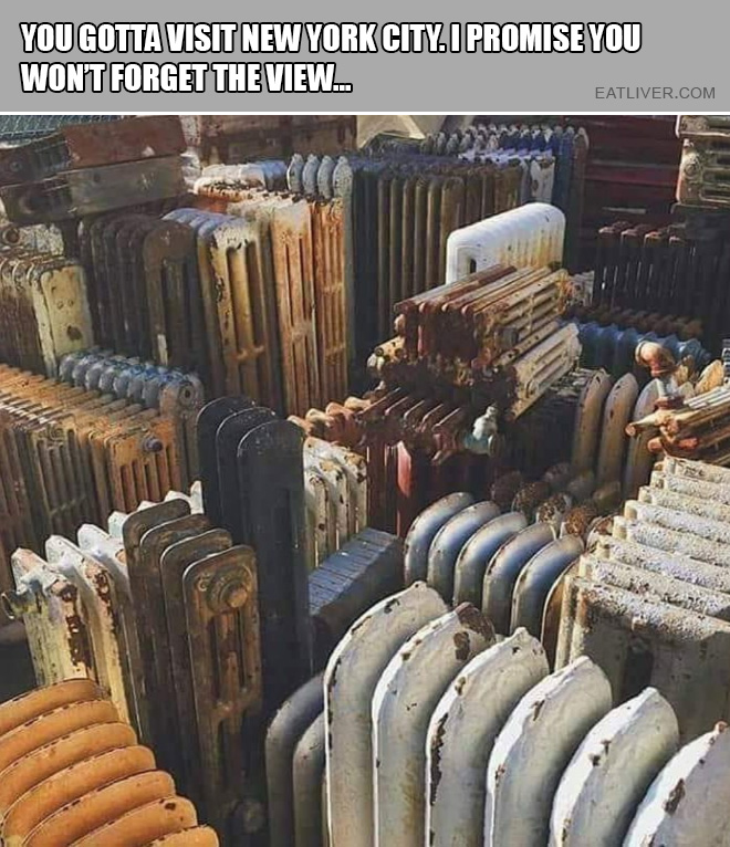 You gotta visit New York City. I promise you won't forget the view...