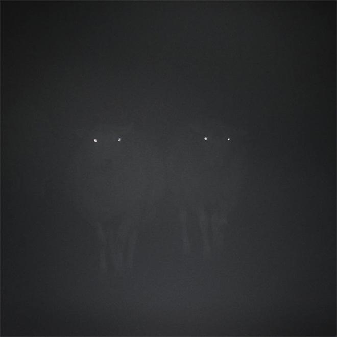 Sheep in the dark fog.