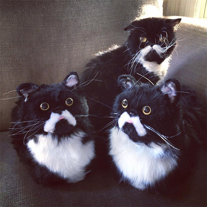 Cat posing with slippers that look just like him.