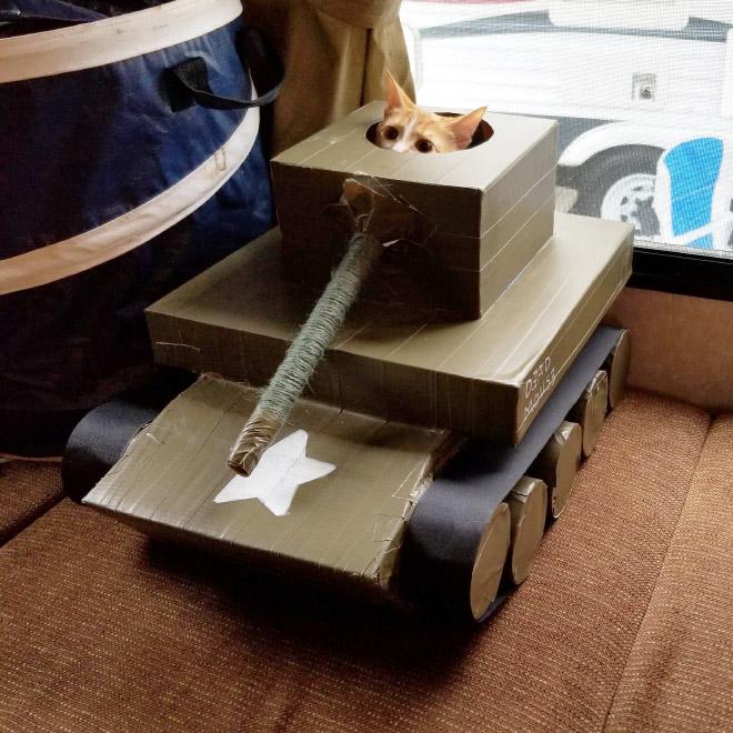 American cat army tank.