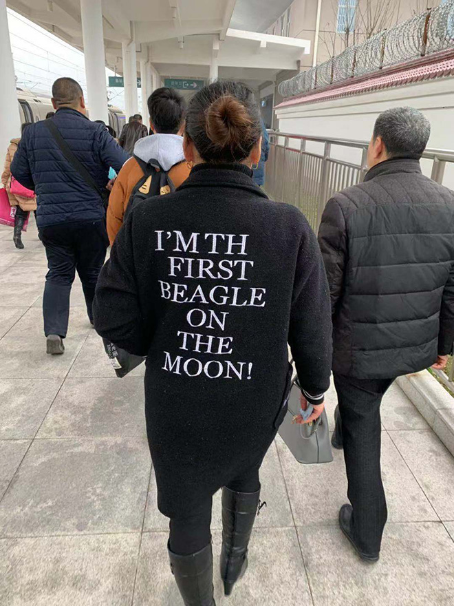 She's the first beagle on the Moon.