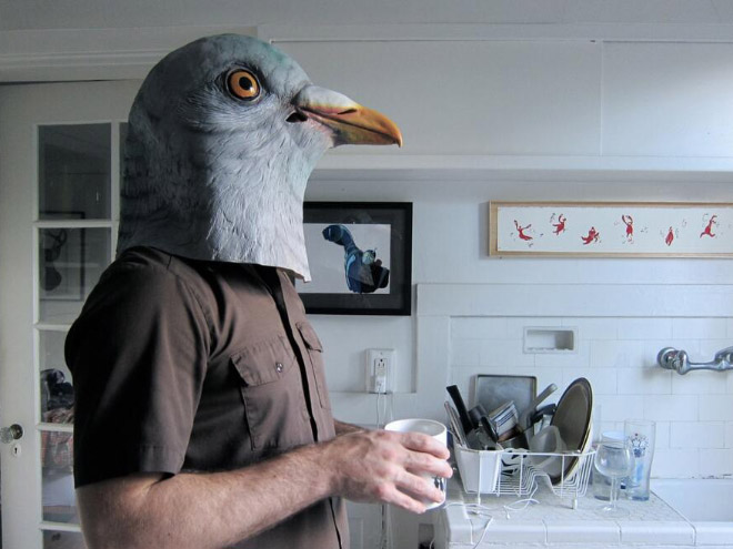 Realistic pigeon mask is the best thing ever made.