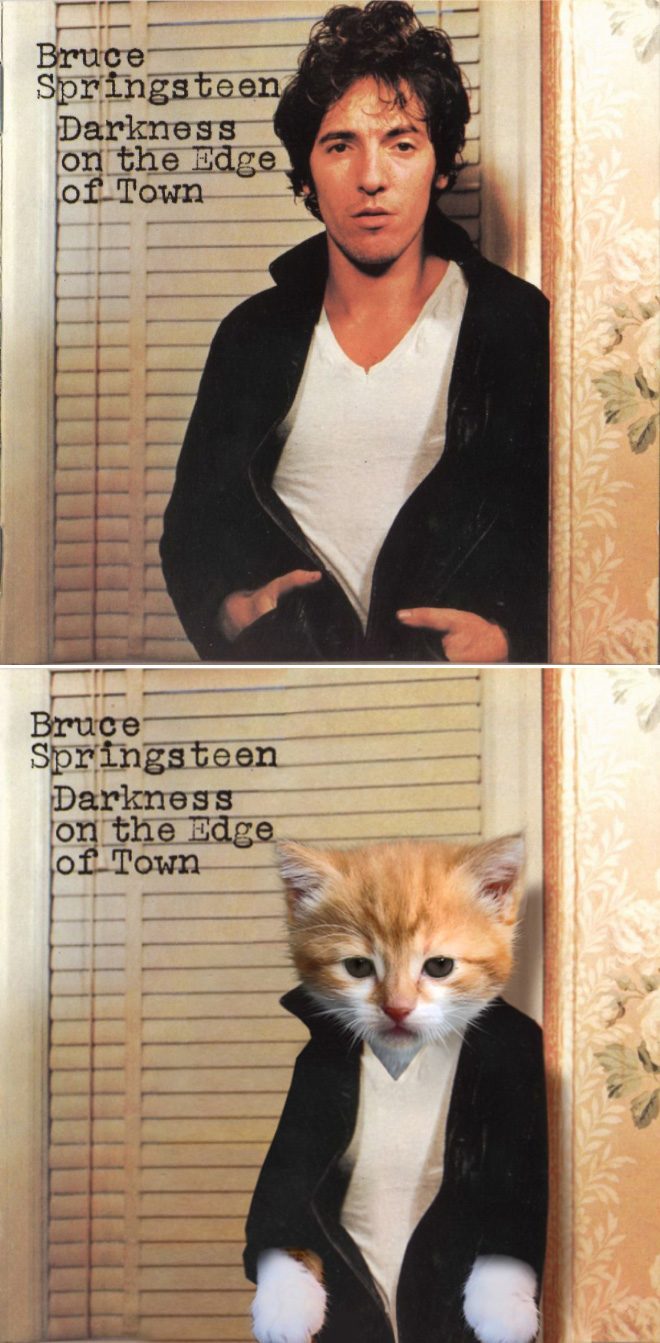Iconic album cover improved with kittens.