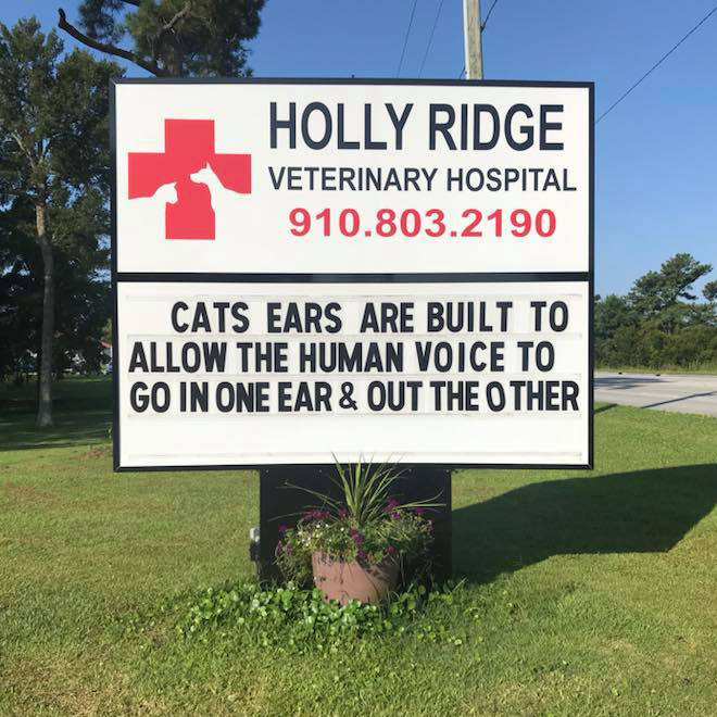 Awesome vet sign.