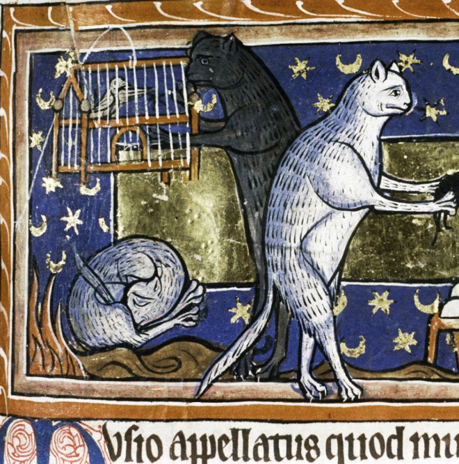 Medieval painting of cat licking his own butt.