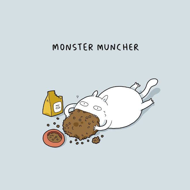 Is your cat like this?