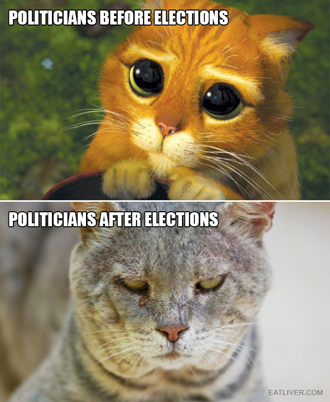 Before elections vs. after elections.