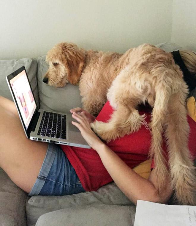 Working from home during Coronavirus.