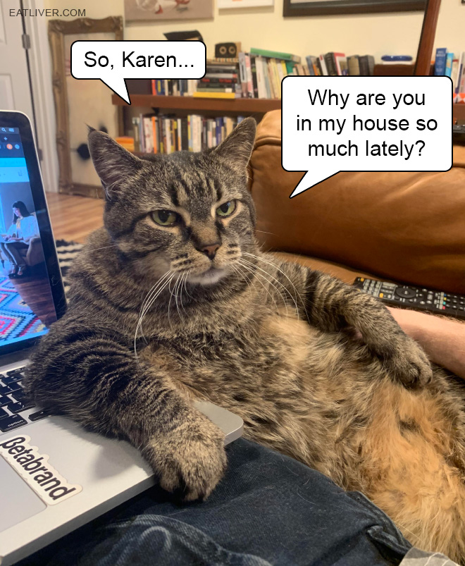 So, Karen... Why are you in my house so much lately?