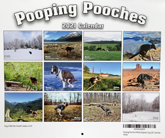 Pooping Pooches 2021 calendar.