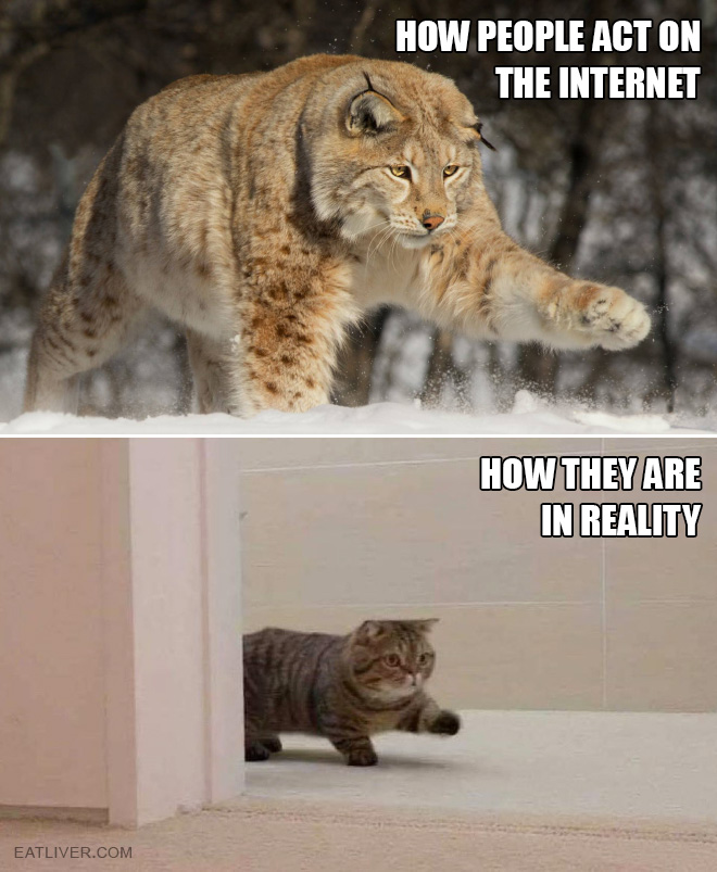 How people act online vs. how people act in real life.