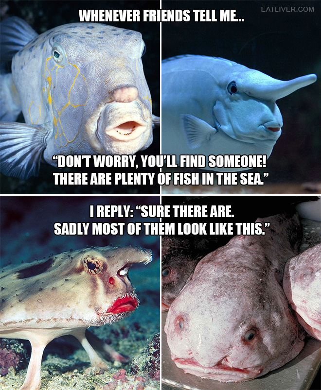 There are plenty of fish in the sea.