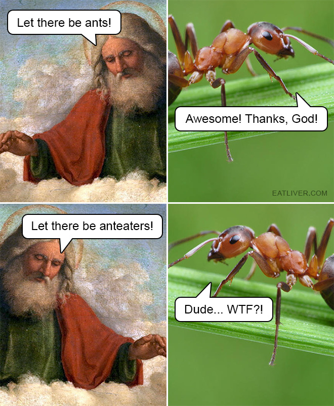 God was so cruel to ants... Seriously, not cool. Imagine if God created humaneaters!