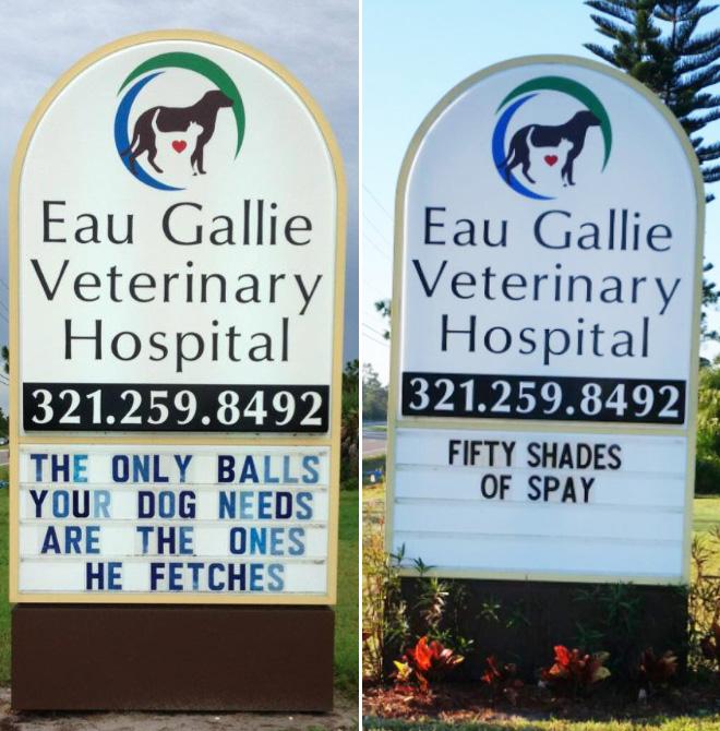 Brilliant vet signs.