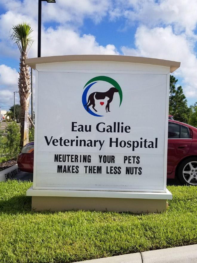 Brilliant vet sign.